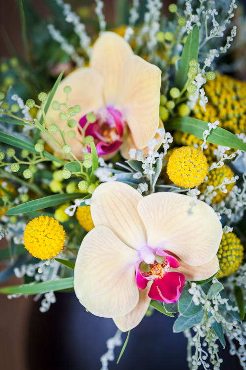 Flowerona Helen Cranmer Orchid-6