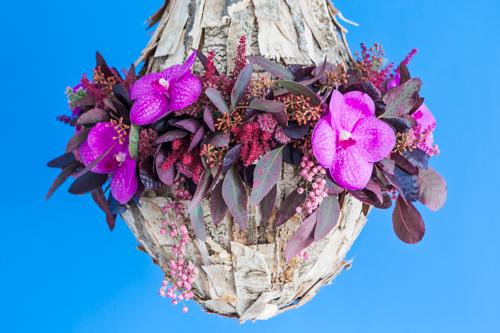 Flowerona Helen Cranmer Orchid-8