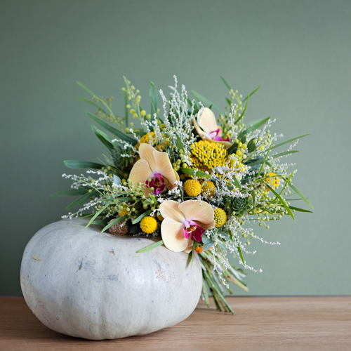 Flowerona Helen Cranmer Orchid-9