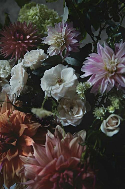 Jo-Flowers-Flowerona-15