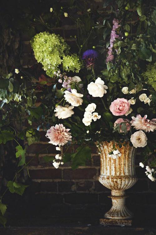 Jo-Flowers-Flowerona-7