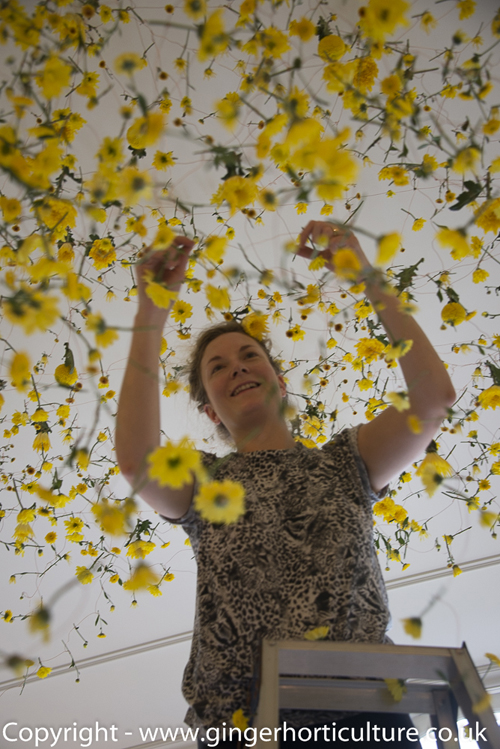 Breath-taking floral installation by Rebecca Louise Law in Japan – The Yellow Flower