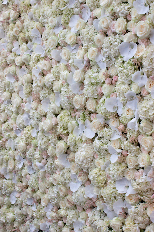 Pin Flower Wall Pepar December 2014 on Pinterest