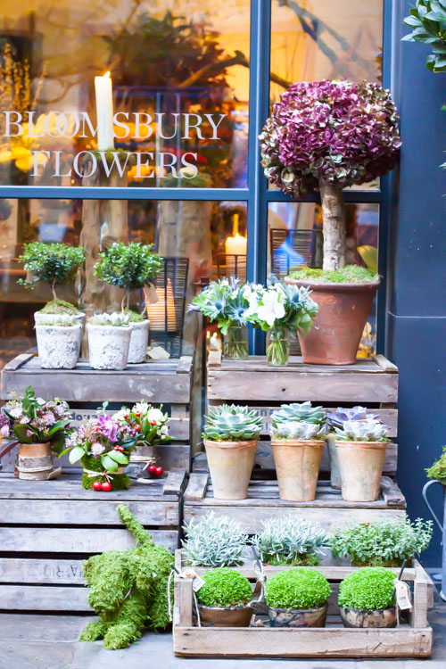 Bloomsbury Flowers Ham Yard Village Flowerona-2
