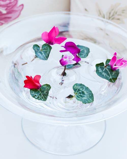 Flowerona Ann Briggs Cyclamen-5