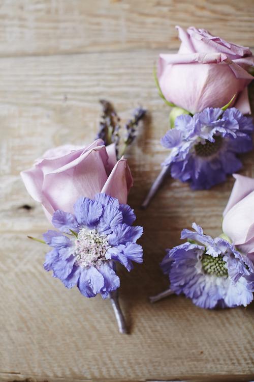 Matt-Russell-Jamie-Aston-Flowerona-10