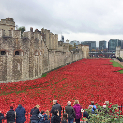Blood Swept Lands and Seas of Red – The art installation of poppies at the Tower of London