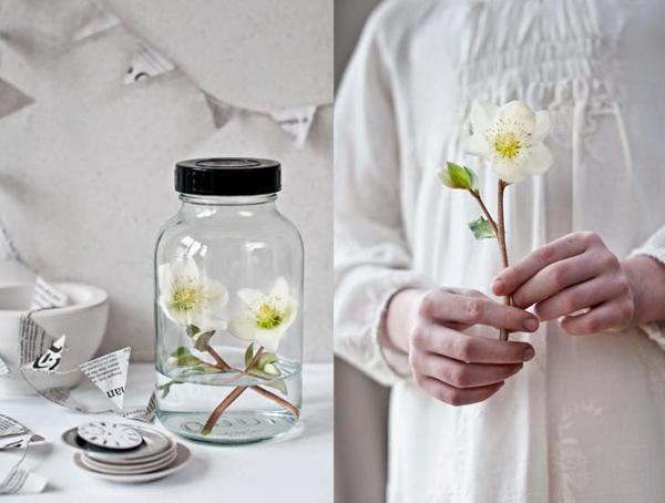 Cornelia-Weber-Flowerona-11