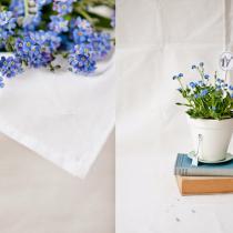 Cornelia-Weber-Flowerona-Feature