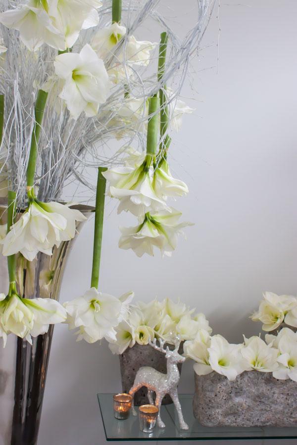 Mary Jane Vaughan Festive Open House 2014 Flowerona-40