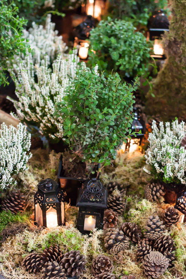 Mary Jane Vaughan Festive Open House 2014 Flowerona-47
