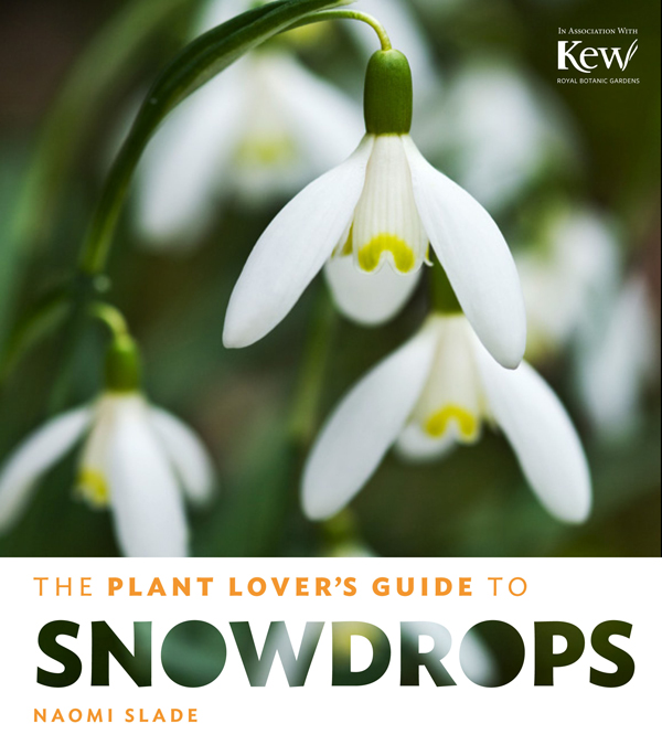 The-Plant-Lover's-Guide-to-Snowdrops-Naomi-Slade-Flowerona