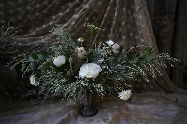 Winter-flowers-Vervain-Flowerona-2