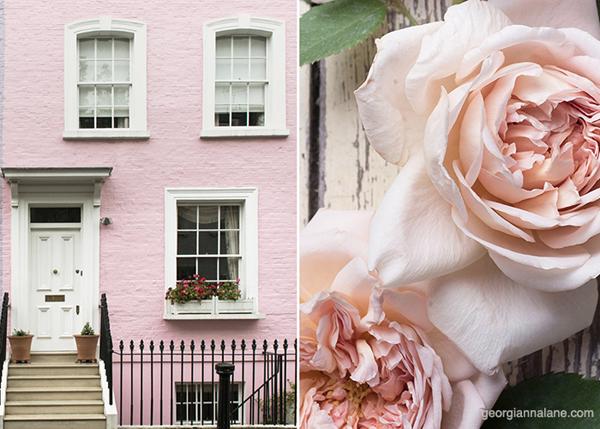 Georgianna-Lane-pink-blog-post