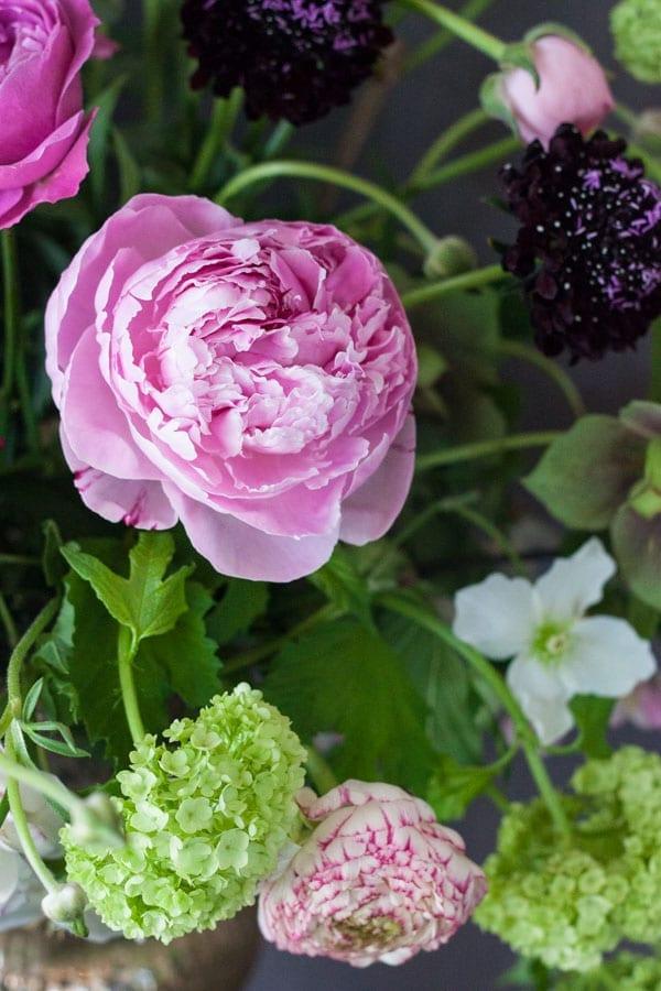 Sabine Darrall G Lily Flower School-Flowerona_-17