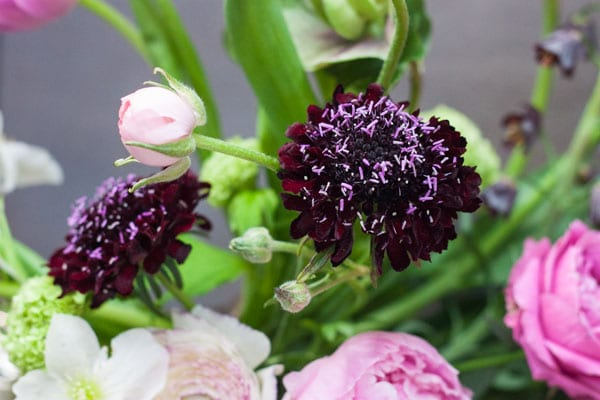 Sabine Darrall G Lily Flower School-Flowerona_-18