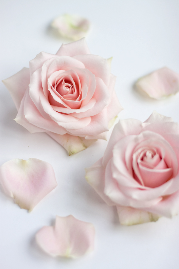 Sweet-Avalanche-Flowerona-2
