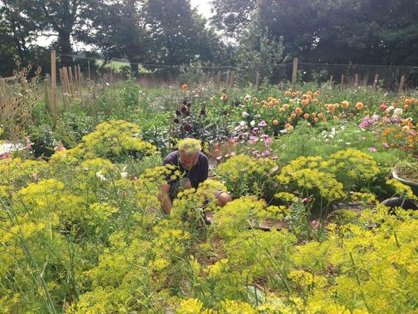 The-Garden-Gate-Flower-Company-Flowerona-10