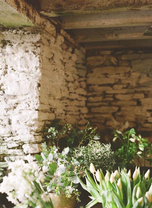 The-Garden-Gate-Flower-Company-Flowerona-Taylor-&-Porter-Fine-Art-Film-Photography-5