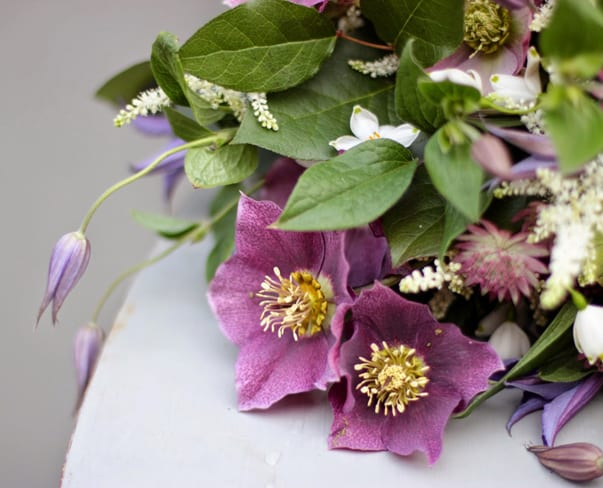 Flowerona Links : With hellebores, floral angels & a tent…