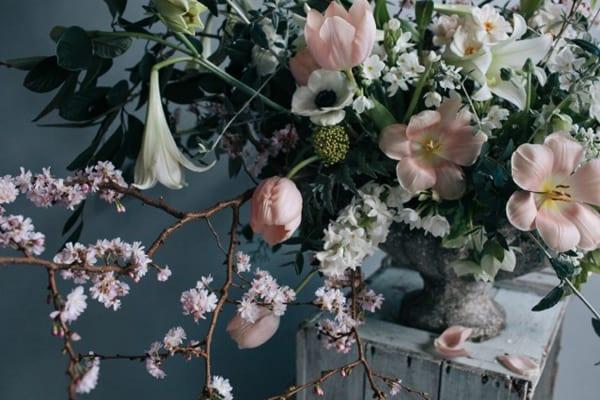 Jo-Flowers-Flowerona-3