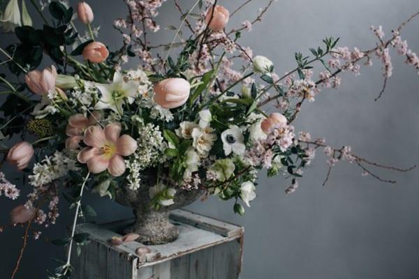Jo-Flowers-Flowerona-4