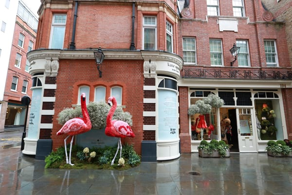 Chelsea-in-Bloom-2015-Flowerona-6
