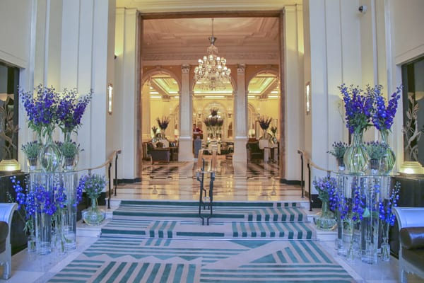 Claridges-delphinium-April-2015_68