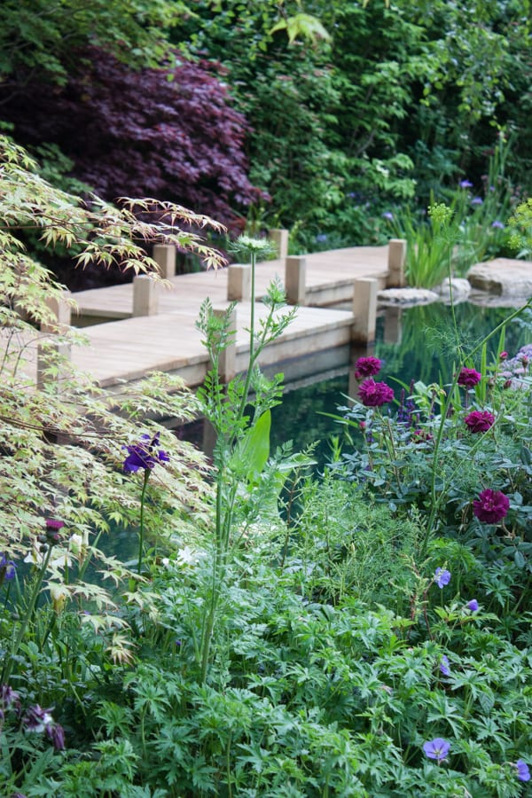 Jo Thompson M and G Garden RHS Chelsea Flower Show 2015 Flowerona-2