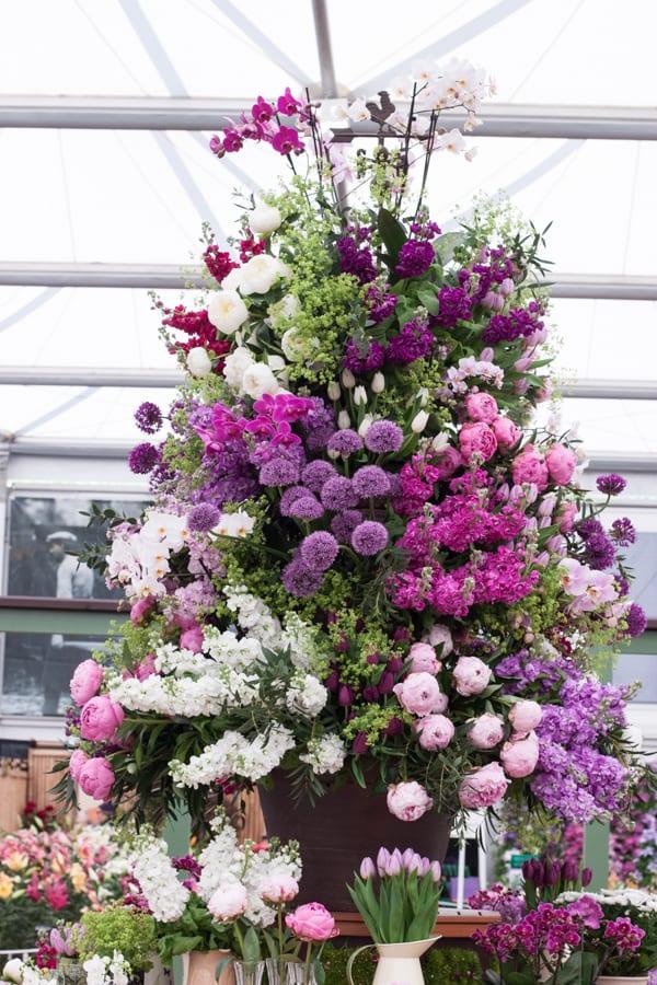 Marks & Spencer RHS Chelsea Flower Show 2015 Flowerona-13