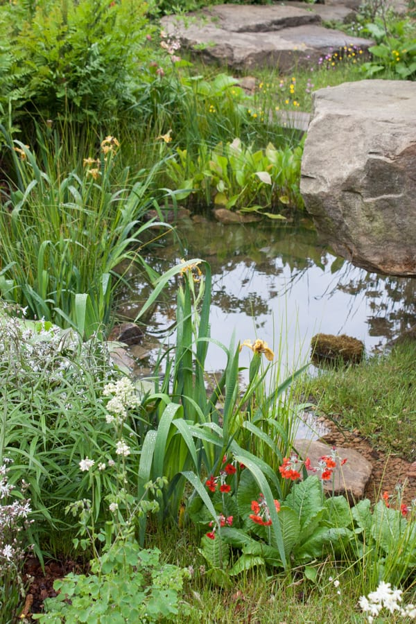 The Laurent-Perrier Chatsworth Garden Dan Pearson RHS Chelsea Flower Show 2015 Flowerona-7