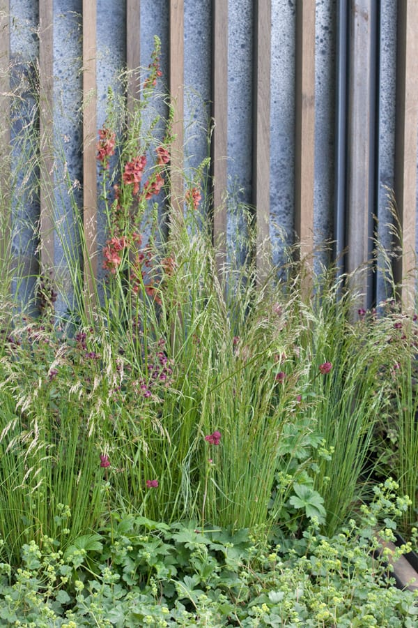 The-Rich-Brothers-Cloudy-Bay-Garden-RHS-Chelsea-Flower-Show-2015-Flowerona-11