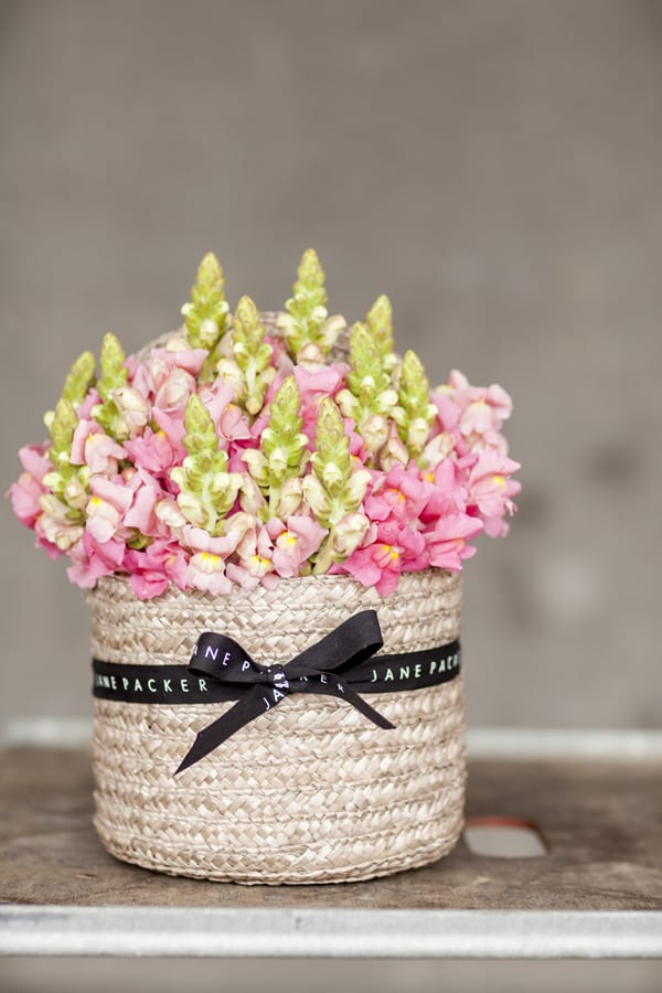 British-Flowers-Week-2015-New-Covent-Garden-Flower-Market-Flowerona-Signature-Hatbox-by-Jane-Packer-Snapdragons