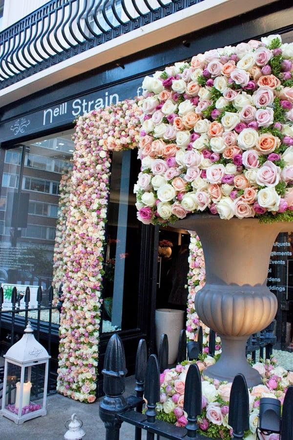 Neill-Strain-The-Celebration-of-the-Rose-Flowerona-2