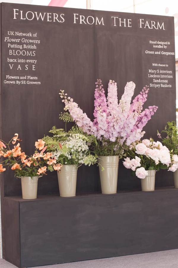 RHS Hampton Court Palace Flower Show 2015 Flowerona-127