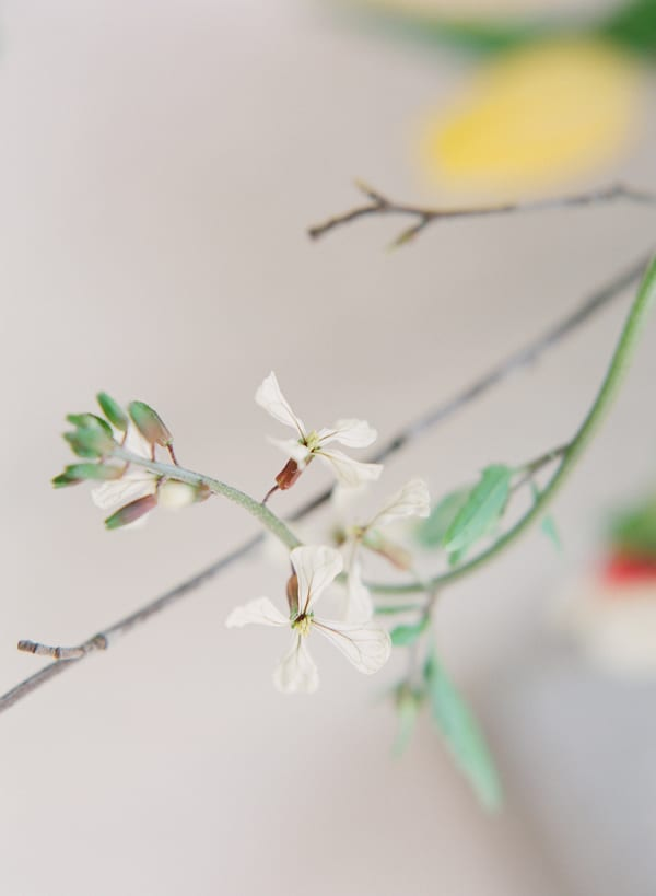 Taylor-&-Porter-Photography-The-Garden-Gate-Flower-Company-Workshop-Flowerona-18