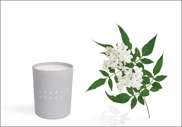 Robbie Honey Candles Flowerona 5