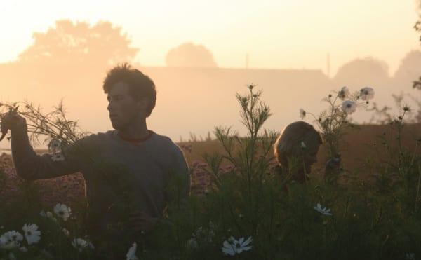 The-Land-Gardeners-Flowerona-3