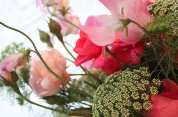 The-Land-Gardeners-Flowerona-6