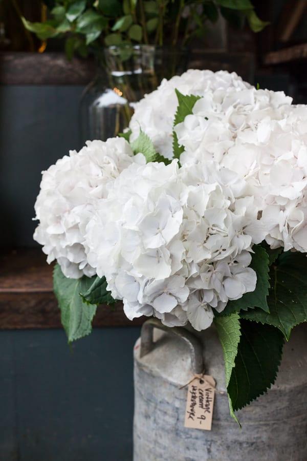 Katie Spicer The Floral Alchemist Flowerona 2