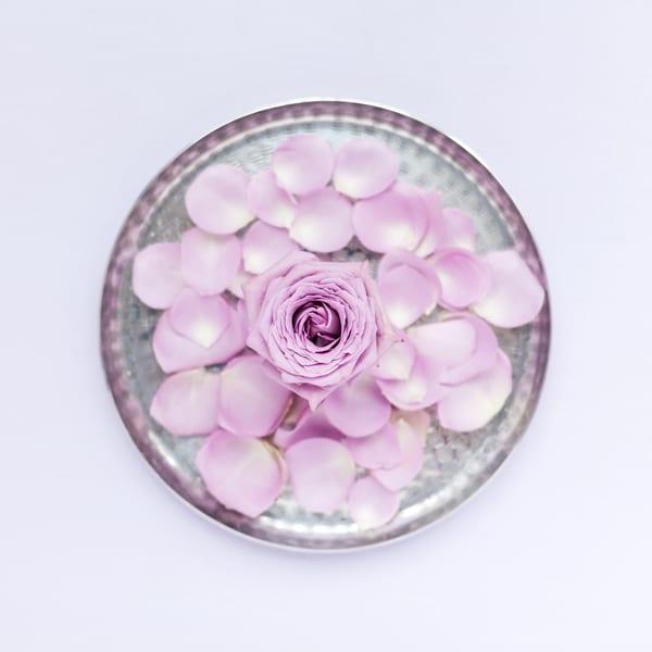 Katie-Spicer-The-Floral-Alchemist