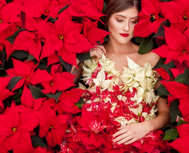 Living Poinsettia Dress by Okishima & Simmonds for International Poinsettia Day – 12th December 2015