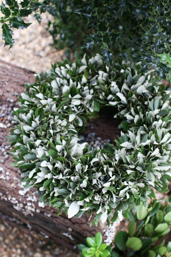 Zita Elze Florist Shop Christmas 2015 Flowerona-12