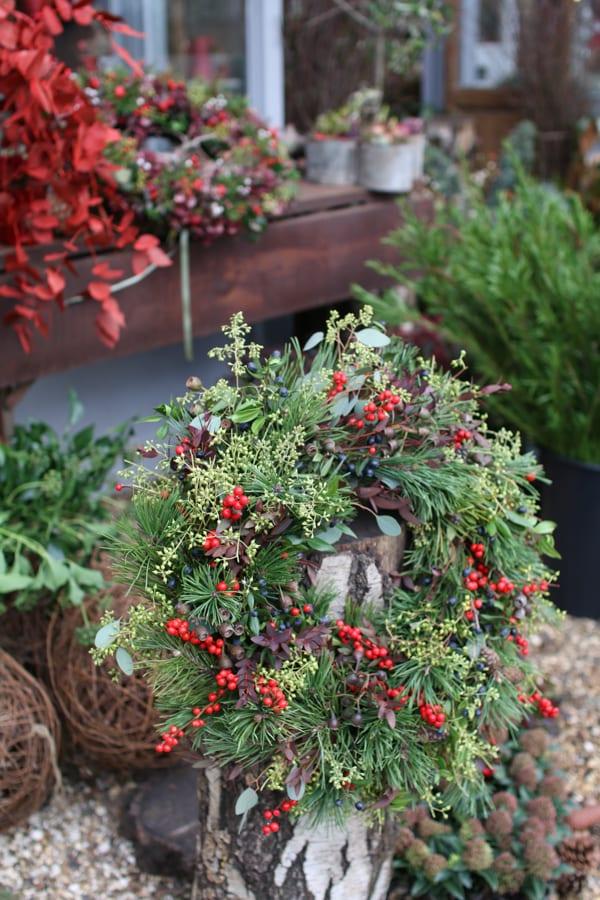 Zita Elze Florist Shop Christmas 2015 Flowerona-25