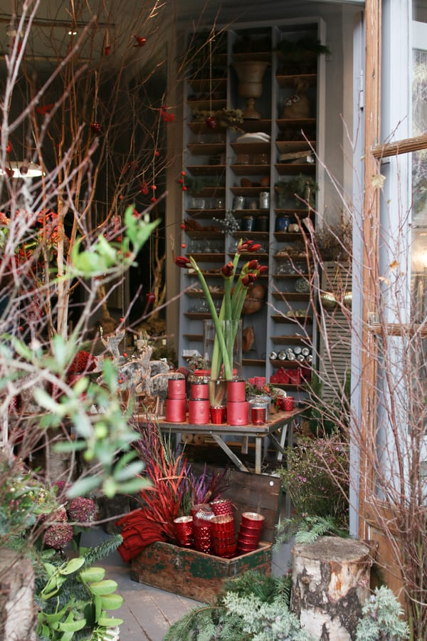Zita Elze Florist Shop Christmas 2015 Flowerona-26