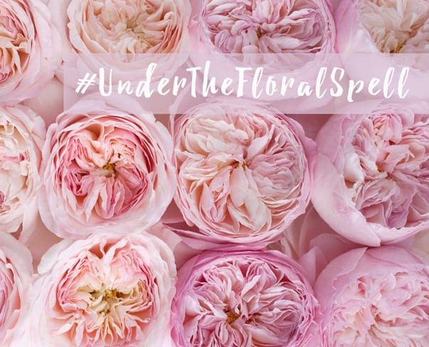 Hashtag Challenge on Instagram : #UnderTheFloralSpell