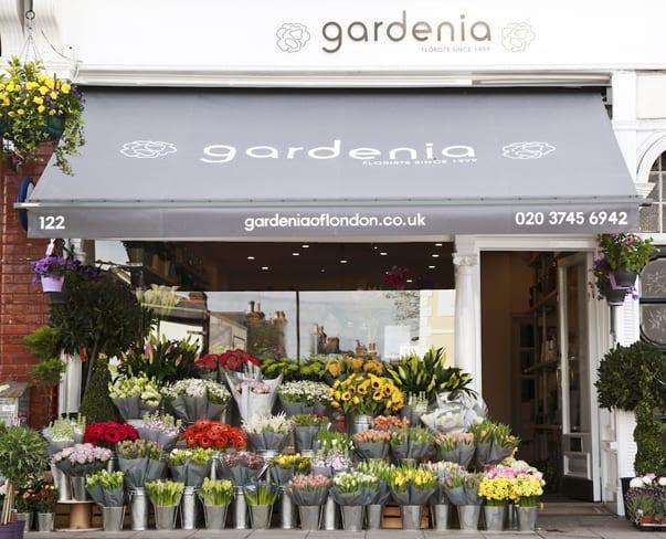 Flowerona Links : With Italian florists, houseplants & a calendar…