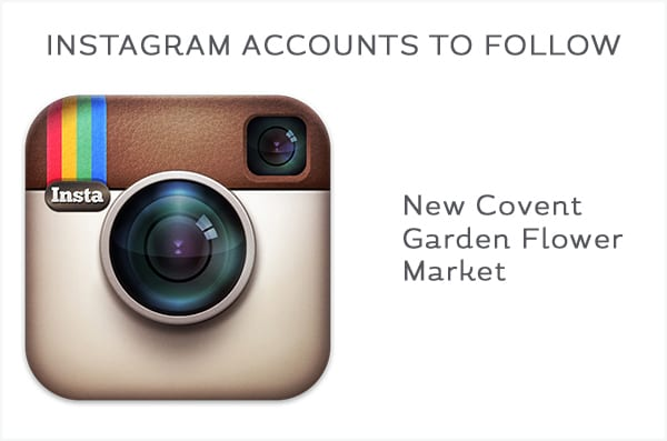 Instagram-Accounts-to-Follow-Master-600-4
