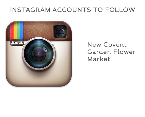 Florist Friday : Instagram Accounts to Follow – New Covent Garden Flower Market