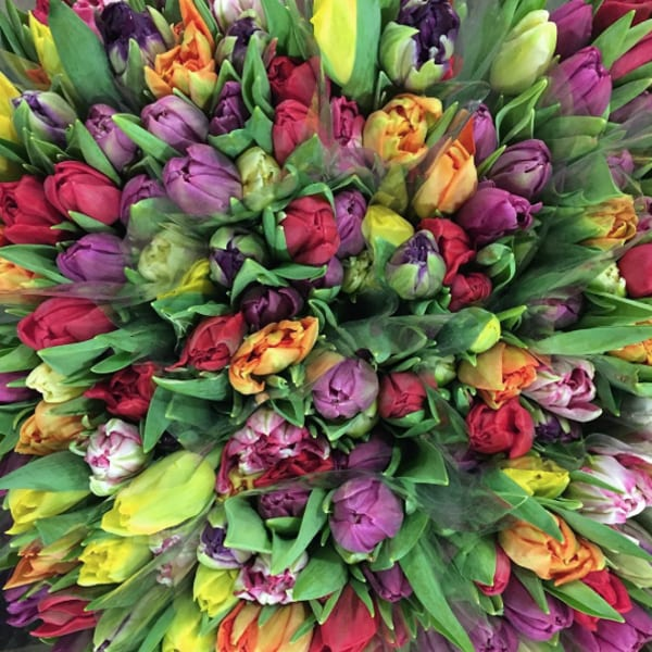 New-Covent-Garden-Flower-Market-Instagram-Alagar-Tulips